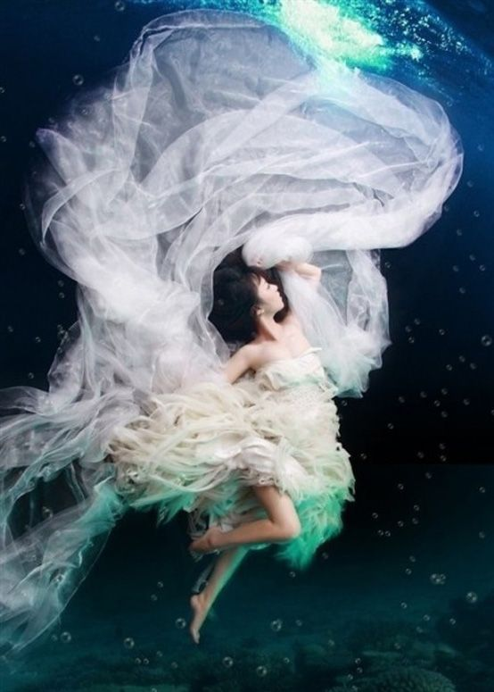 Underwater Wedding Photography   Under The Sea   Pinterest ...