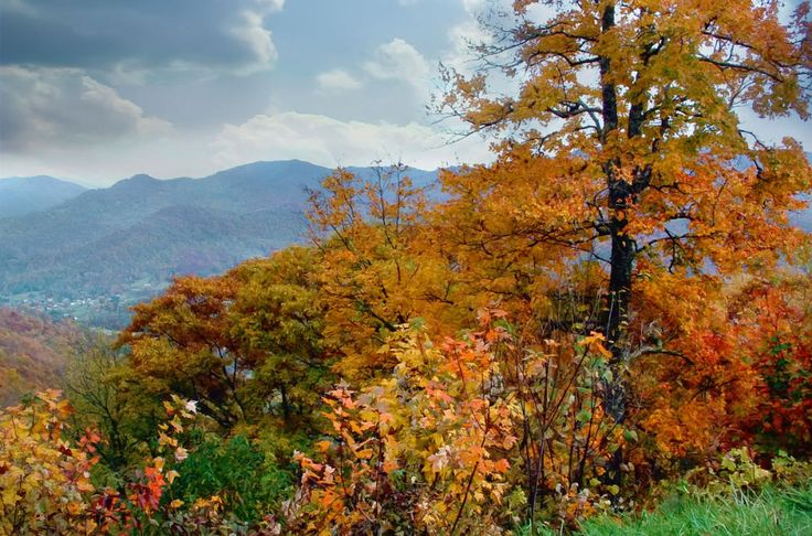 Just minutes from Asheville and off of Blue Ridge Parkway, this humble town provides the perfect leaf viewing getaway with breathtaking views of Great Smoky Mountain National Park. For more information, visit Weavervillenc.org.