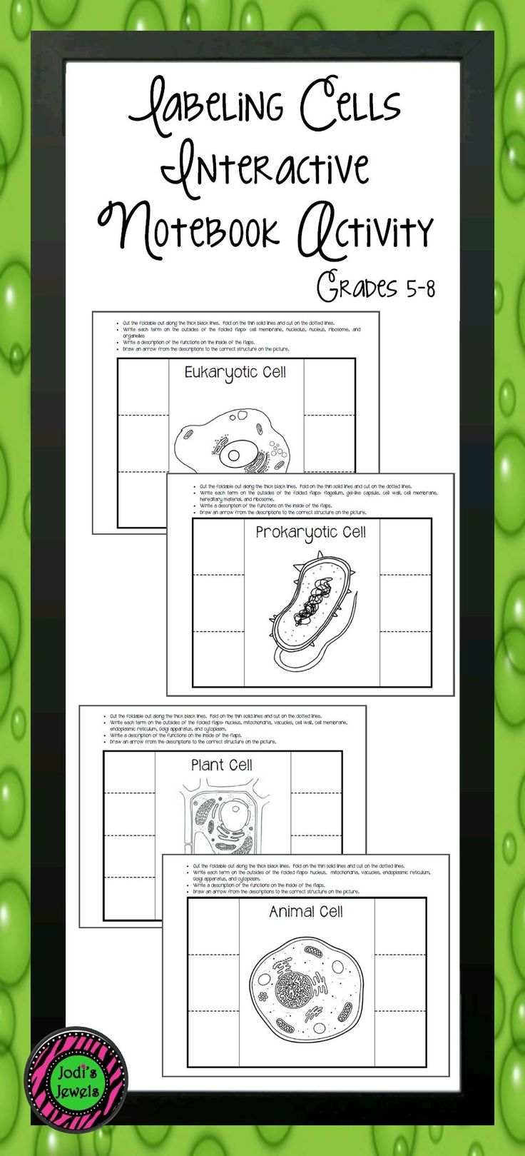 Students will create 4 different interactive notebook diagrams of the following cells: animal cell, plant cell, eukaryotic cell, and prokaryotic cell. Diagrams can be colored according to the teacher's directions. Diagrams could also be used in a lab setting or as a lab quiz. Visit Jodi's Jewels today!