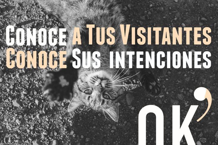 La comprensión de lo que tus visitantes están tratando de lograr, es una de las piezas más importantes de la información necesaria para realizar estrategias de Marketing Online eficaces.  www.ok-otto.com