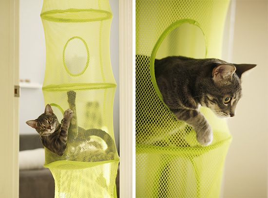 Hanging room iders ikea ideas pictures to pin on pinterest - 25 Best Ideas About Cat Hacks On Pinterest Diy Cat Toys