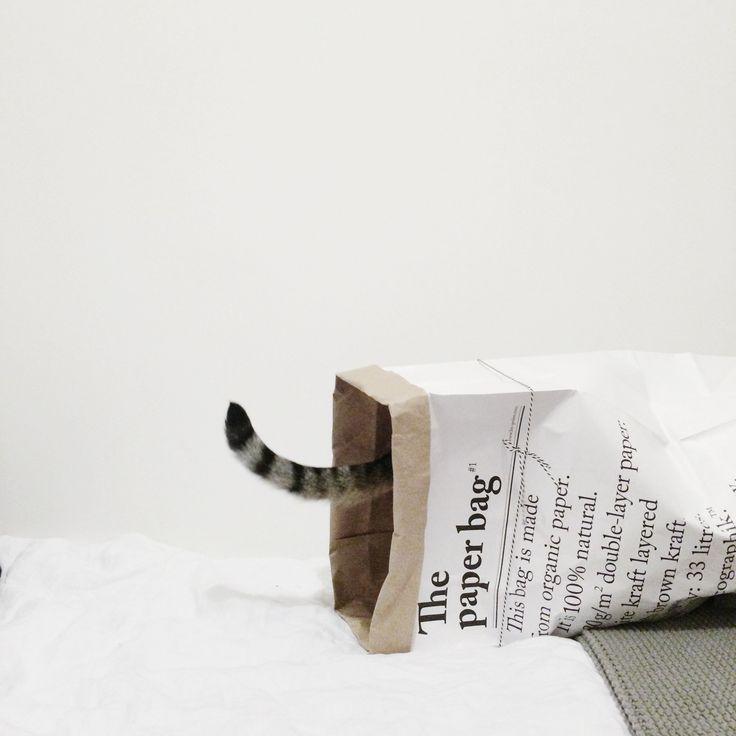 Herlig! Posen finner du på www.multitrend.no - gratis frakt. Instagram: @ alivingdiary the paper bag / le sac en papier from peastyle.co.uk