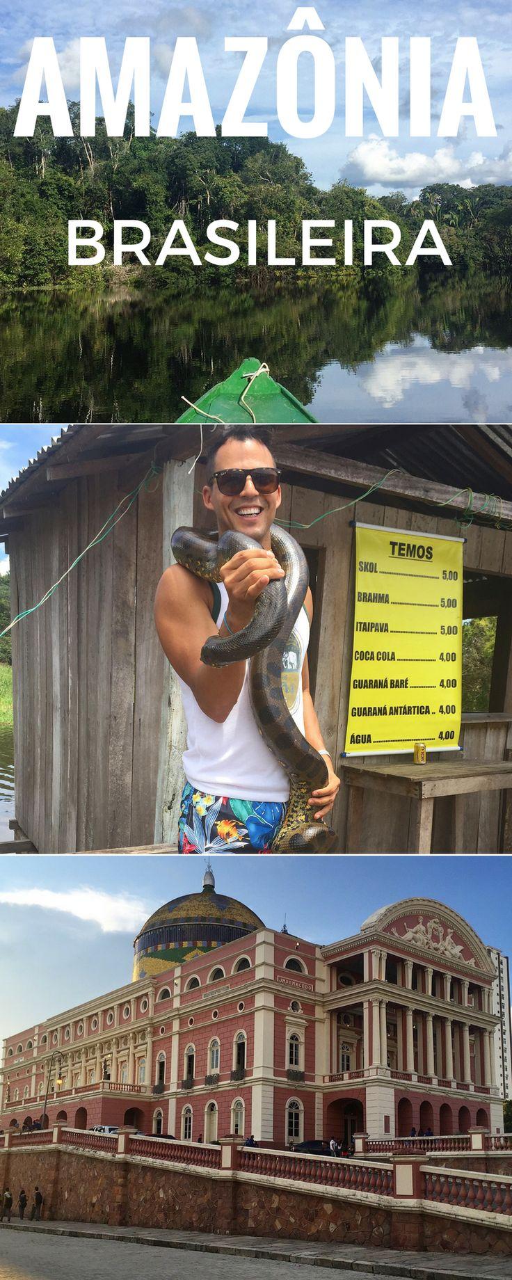 Programando uma viagem à Amazônia? Aqui estão as minha dicas de viagens para Manaus e 7 razões para visitar a cidade.