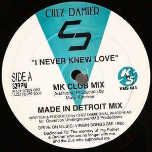 Chez Damier / I Never Knew Love - Rich Records Buy Vinyl Online