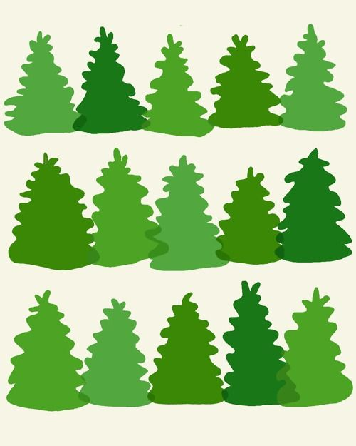 jorey hurley | This afternoon we picked out a Christmas tree at...