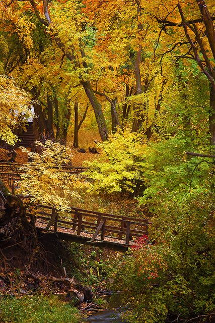 .Autumn - Millcreek Canyon - 10-12-12 04 by Tucapel, via Flickr.I want to go see…