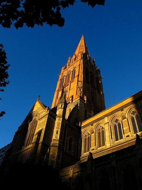 St. Paul's Cathedral in Melbourne. Photo courtesy of Dr. Benjamin Ross.