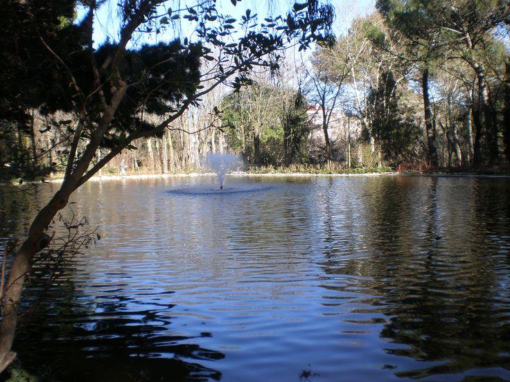 Lago de la quinta de los molinos, madrid