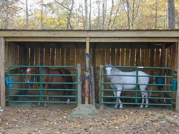 DIY Easy Horse Shelter
