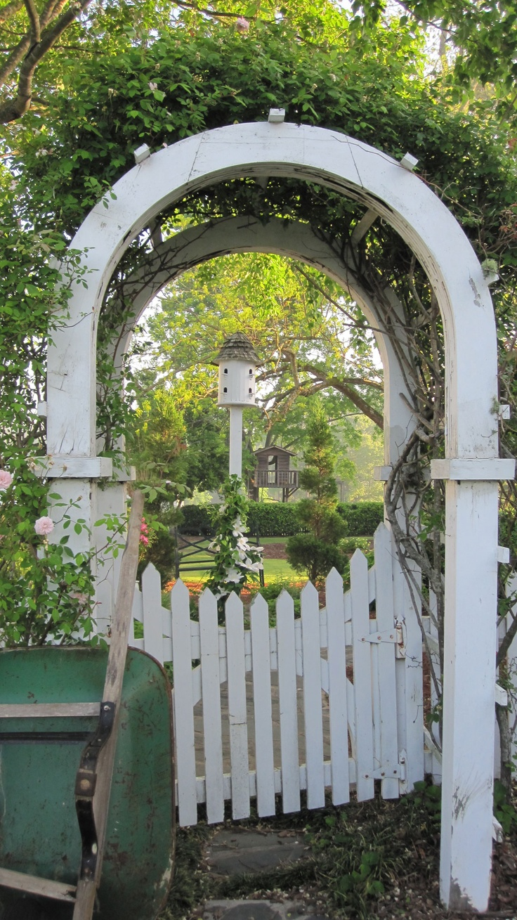 Through the garden arch