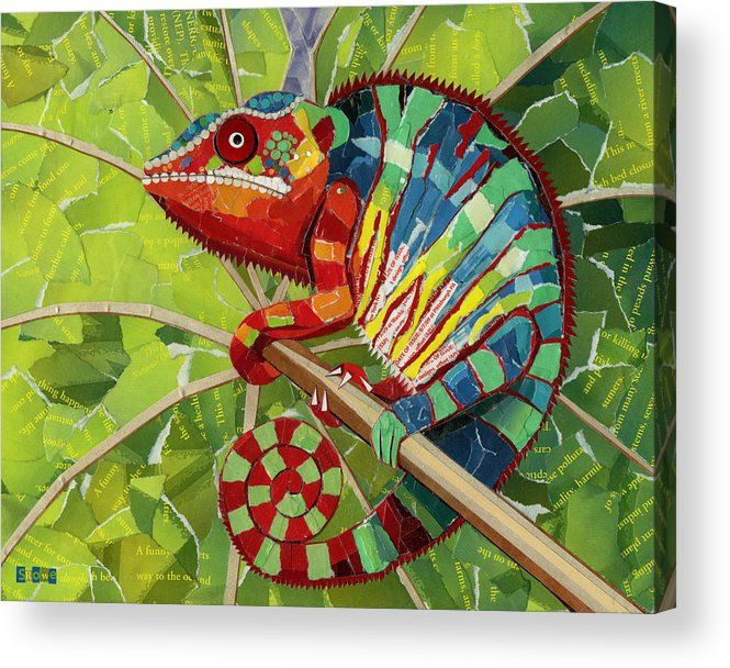 Panther Chameleon Acrylic Print By Shawna Rowe Jungle Art