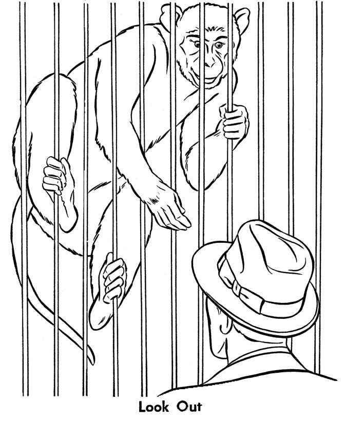 zoo kindergarten coloring pages - photo#20