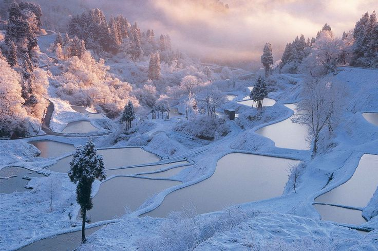 30 reasons to go to Japan before you die. #1 Hoshitouge Rice Terrace/Niigata. The ''water mirror',' which you can see before spring, is a wonderful sight. The Matsudai area is well-known as one of the venues of the Echigo-Tsumari Art Triennale, which is held once every 3 years.