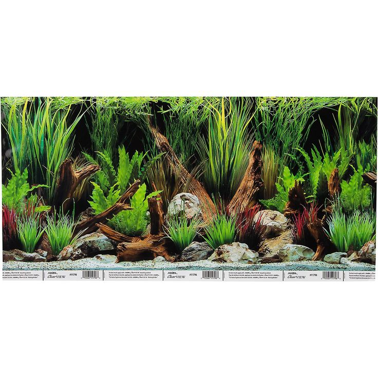 "Hagen Marina Reversible Aquarium Background in Planted Oasis/Slate Wall - 24""  W X 12"" H, For aquariums up to 15 gallons. Beautiful Planted Oasis reverses to Slate Wall for 2 backgrounds in 1! Helps eliminate water stains from appearing. Hides tubing and power cords. - http://www.petco.com/shop/en/petcostore/hagen-marina-reversible-aquarium-background-in-planted-oasisslate-wall"