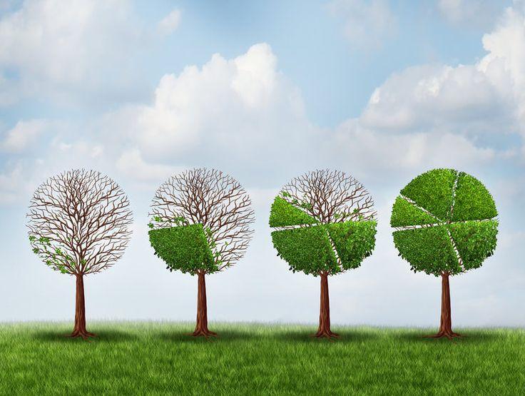 economía verde http://www.expoknews.com/9-pasos-para-obtener-roi-de-la-economia-verde/