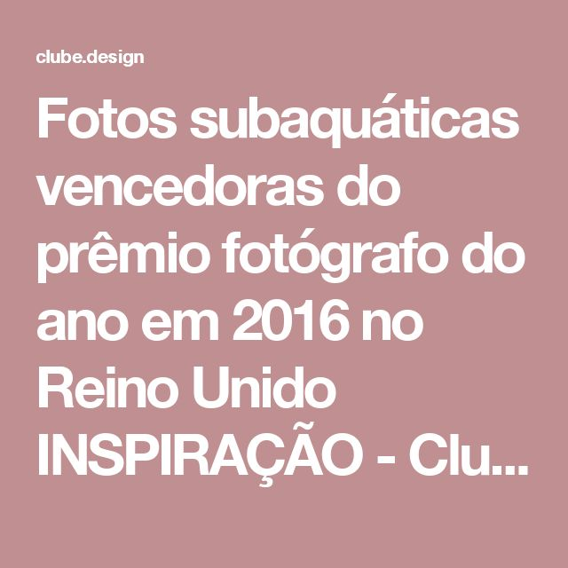 Fotos subaquáticas vencedoras do prêmio fotógrafo do ano em 2016 no Reino Unido INSPIRAÇÃO - Clube do Design