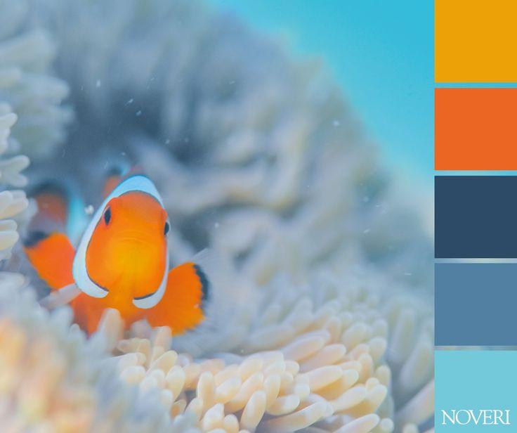 Tempo di mare! Under the sea... #colors #palettes #sea #fish #noveri #creativity #relax #lightcolors