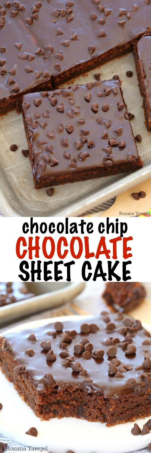 No mixer needed to make this delicious chocolate sheet cake packed with chocolate chips and every bite, both in the cake and on top! You won't wanna share!