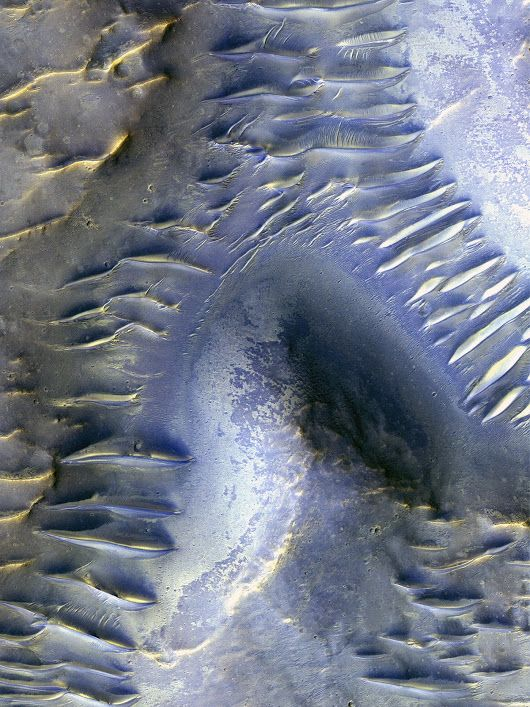 Blocked Dunes on Mars  In this image taken by the High Resolution Imaging Sci...
