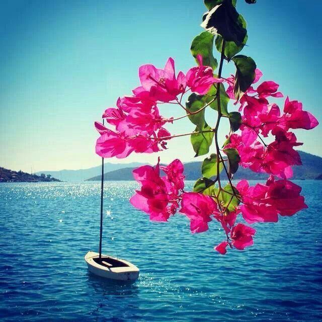 Marmaris, Turkey ~ lovely...