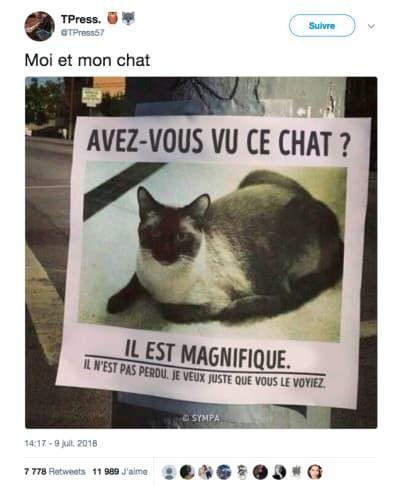 Français gay video