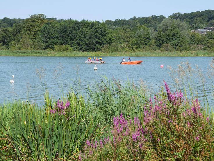 Activities - Whitlingham Broad