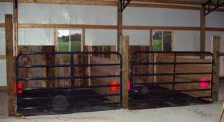 Stall idea- for my other species within the horse barn? Good for sheep and cows