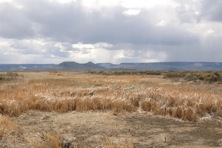 The land in and around the Malheur National Wildlife Refuge was initially promised by treaty to the Burns Paiute Tribe before it was taken by the federal government.