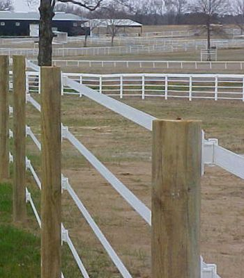 Poly tape horse fencing | The Pro-Tek electric tape fence is highly visible and comes in white ...