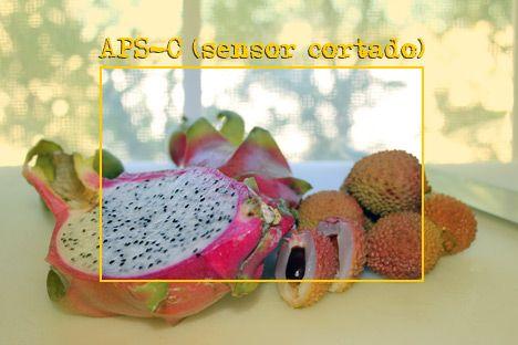 pitaya-e-lichias-asp-c-sensor-cortado