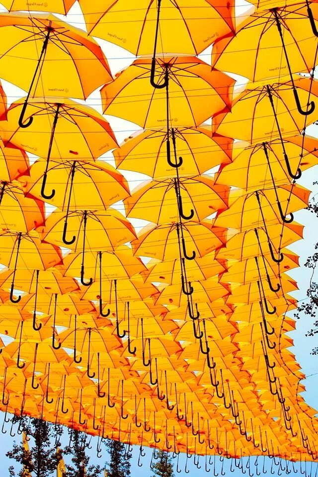 a sky filled with yellow umbrellas! #RainbowAroundMe                                                                                                                                                                                 More