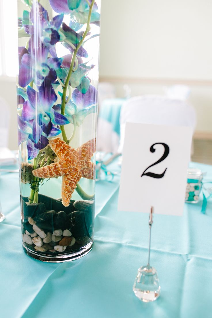 @Hollie Mulkey this is exactly what im thinking!! - different color flower ofcourse!        Beach wedding centerpieces    Starfish: http://www.etsy.com/people/MyWindansea Could sub sand dollar with table # on it to serve as centerpiece and table #.
