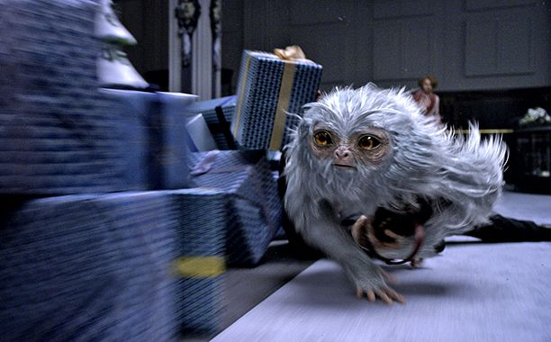 New 'Fantastic Beasts' photos reveal stunning magical creatures