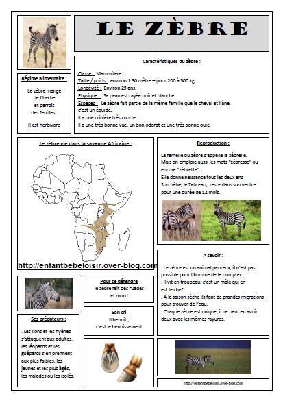 Les 42 meilleures images du tableau projet girafe - Animaux afrique maternelle ...