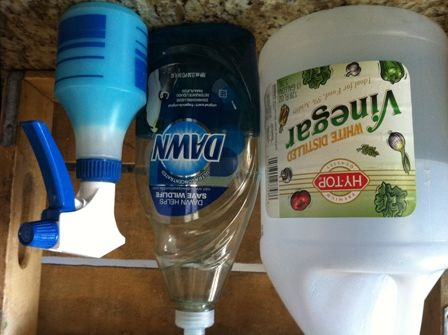 Blue Dawn And Vinegar Cleaning Solution Diy Window