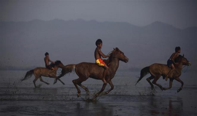 Endiansyah Mohammad (C) warms up his horse on Kalaki beach outside Bima, Indonesia, November 17, 2012. Dozens of Indonesian child jockeys compete in horse racing in Bima for the chance to win cash and cows for their families.  REUTERS/Beawiharta