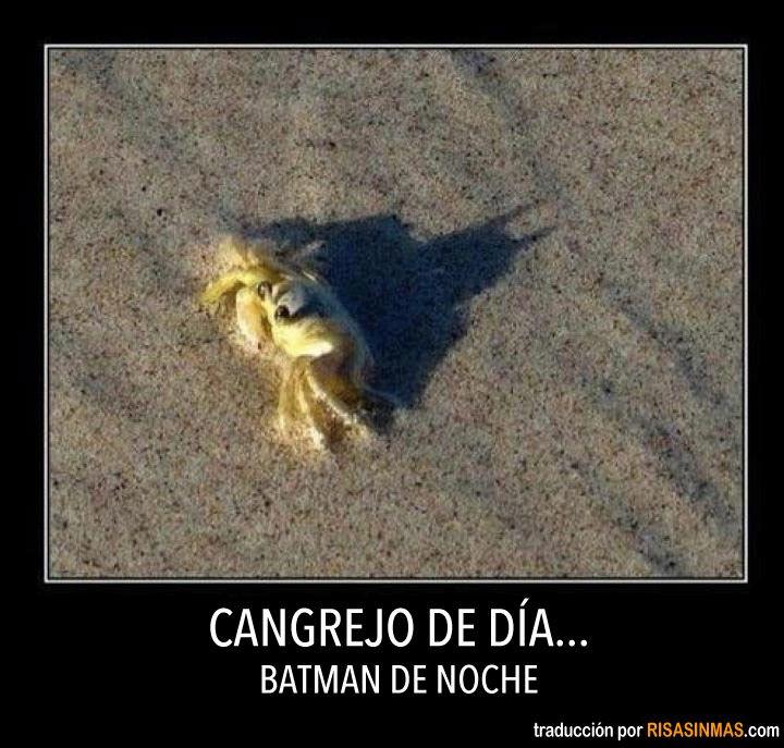 Cangrejo de día... Batman de noche.