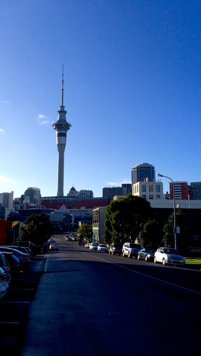 Sky Penis in Auckland