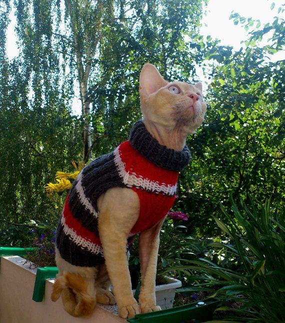 Hand knitted Cat Small Dog Sweater Jumper Jacket by RamonaStore