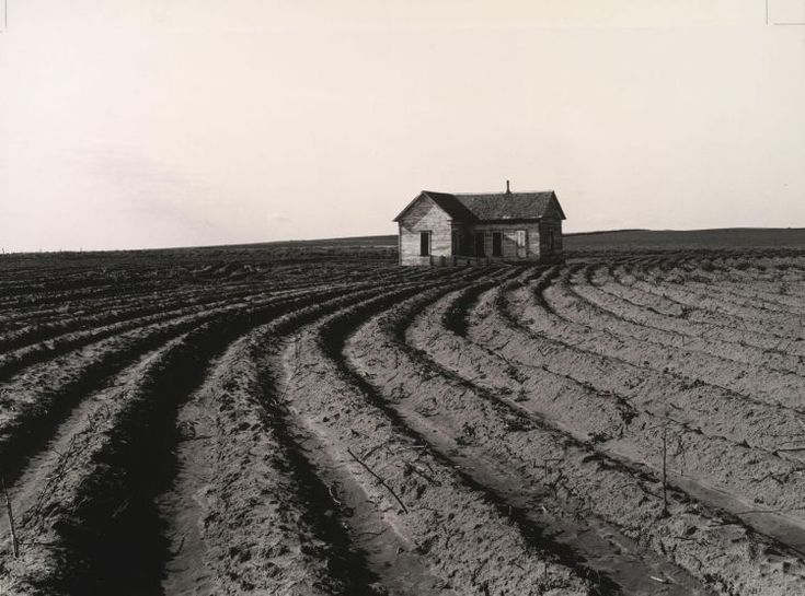 Dorothea Lange  :: leading lines--why she's a master ::