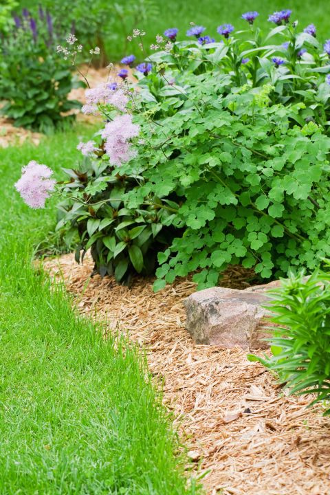 1000 Ideas About Rubber Mulch On Pinterest Kids Play