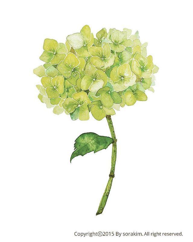 11월 원데이클래스에 참여하시는 분들께 드릴 미니포스터 예요. 꽃그림 수업에 참여하시는 분들은 수국그림과 꽃다발그림 2가지, 풍경화 수업에 참여하시는 분들은 수국그림과 서울야경그림2가지를 드릴꺼예요!