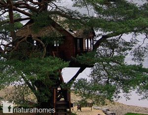 This is a POSH (Port Out Starboard Home) treehouse built by The Treehouse Company for The Lodge, a five star hotel on the banks of Loch Goil deep in Argyll Forest Park in Scotland. More treehouses at www.naturalhomes.org/treehouses.htm