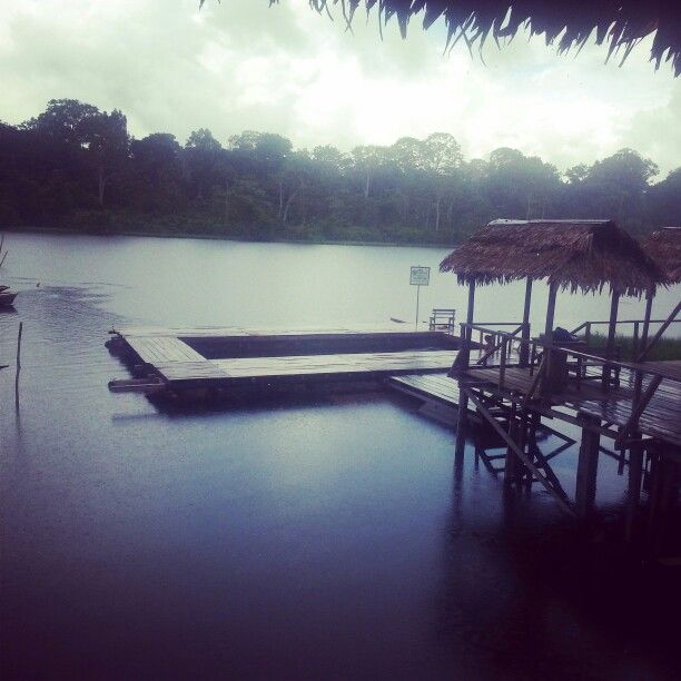 Realismo magico Amazonas