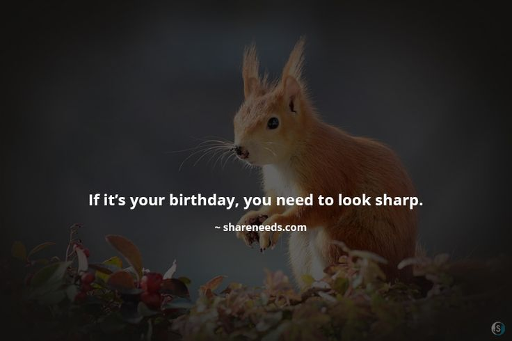 If it's your birthday, you need to look sharp.