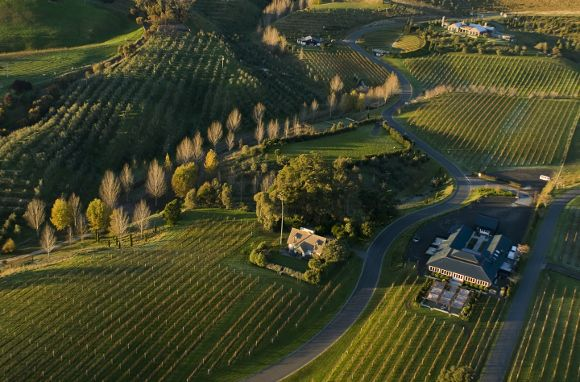 New Zealand's food and wine scene is quickly becoming one of the world's best. Here's a tour of its Classic Wine Trail and  notable restaurants.