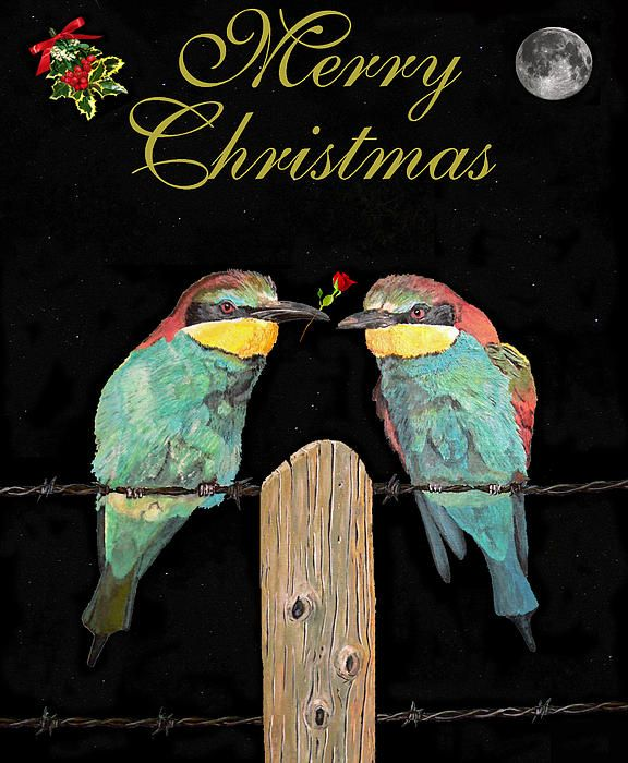 Bee Eaters Lesvos - Customised Christmas Cards Fine Art America