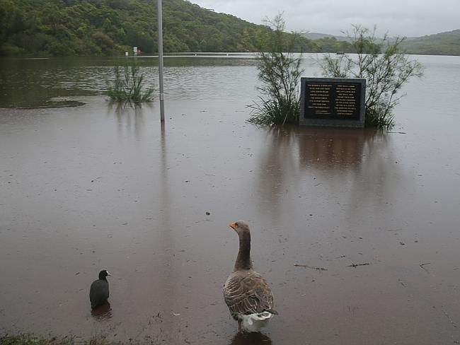 The east coast low continues to batter NSW Manly dam above North Manly is causing local f