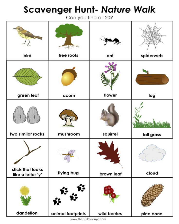 Perfect for fall, this nature scavenger hunt uses pictures to help your non-reader find items outdoors. Cover with laminate make this reusable and take a dry erase marker out on your next walk through your neighborhood or nearby park. Be sure to give your child a chance to mark off the finds--practice at holding writing tools is essential for later pencil use!