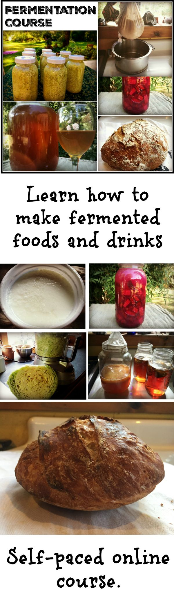Making your own fermented foods will not only dramatically increase your health, but also save you lots of money! In my online fermentation course, learn to make Greek Yogurt, Beet Kvass, Sauerkraut, Kombucha and No knead bread. You learn with ebooks, demonstration movies filmed in my kitchen, and a private Facebook group.